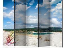 Paraván - Beach on the Costa da Morte II [Room Dividers]